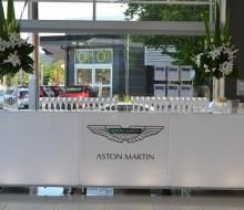 Aston Martin Vanquish – Solitaire