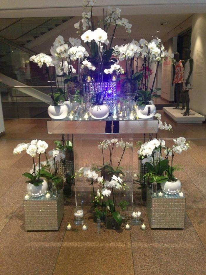 A Night of Fashion – Art Gallery 2013