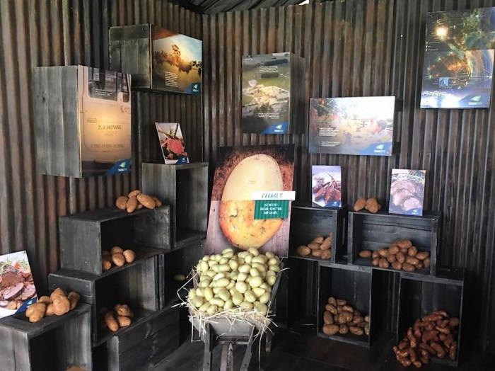 Tasting Australia – Thomas Foods