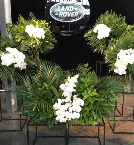 Land Rover – Plant4